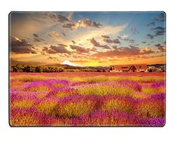 MSD Placemat IMAGE ID 20371052 Beautiful lavender field at s
